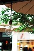 Close-Up Of Light Bulb Hanging Against Tree