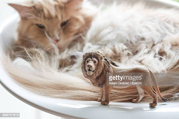 Close-Up Of Lion Figurine And Cat On Chair