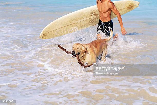 Close-up of man and dog walking out of ocean surf