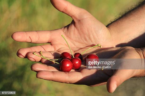 Close-Up Of Man Holding Berry Fruit