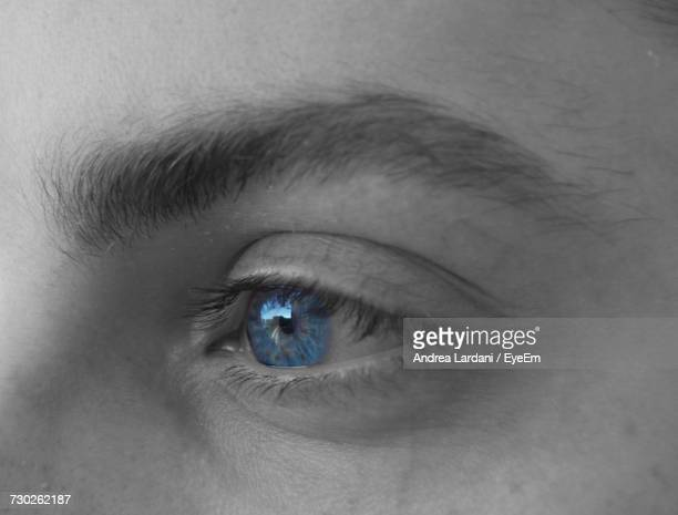 Close-Up Of Man With Blue Eye