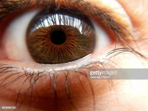 Close-up of men's brown eye