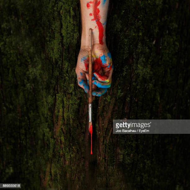 Close-Up Of Messy Hand Holding Paintbrush By Tree Trunk In Forest