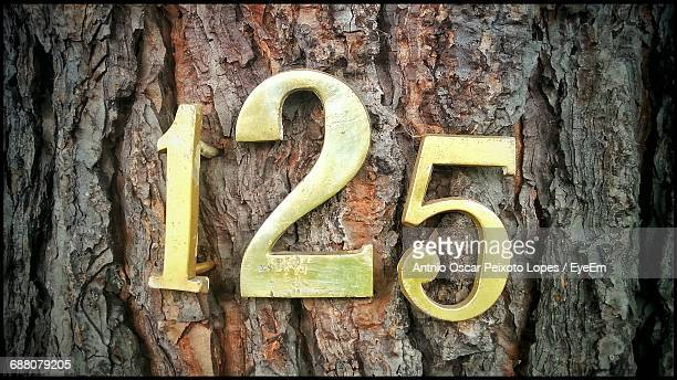Close-Up Of Metallic Numbers On Tree Trunk