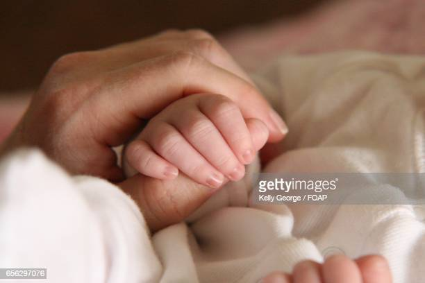 Close-up of newborn baby holdings his mother finger