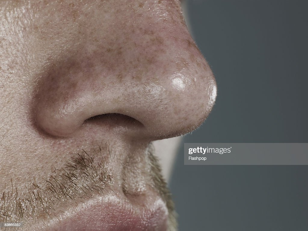 Close-up of nose : Stock Photo