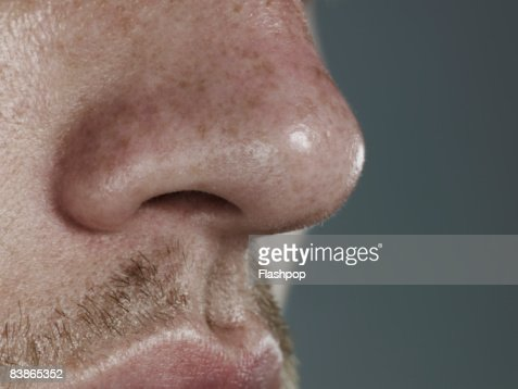 Close-up of nose : Bildbanksbilder