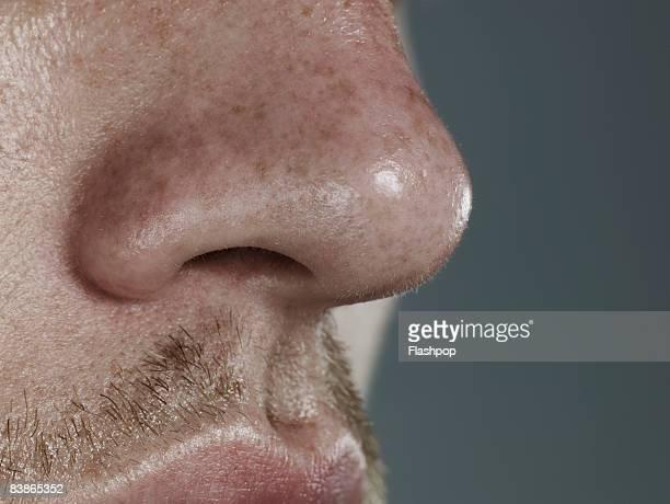 Close-up of nose