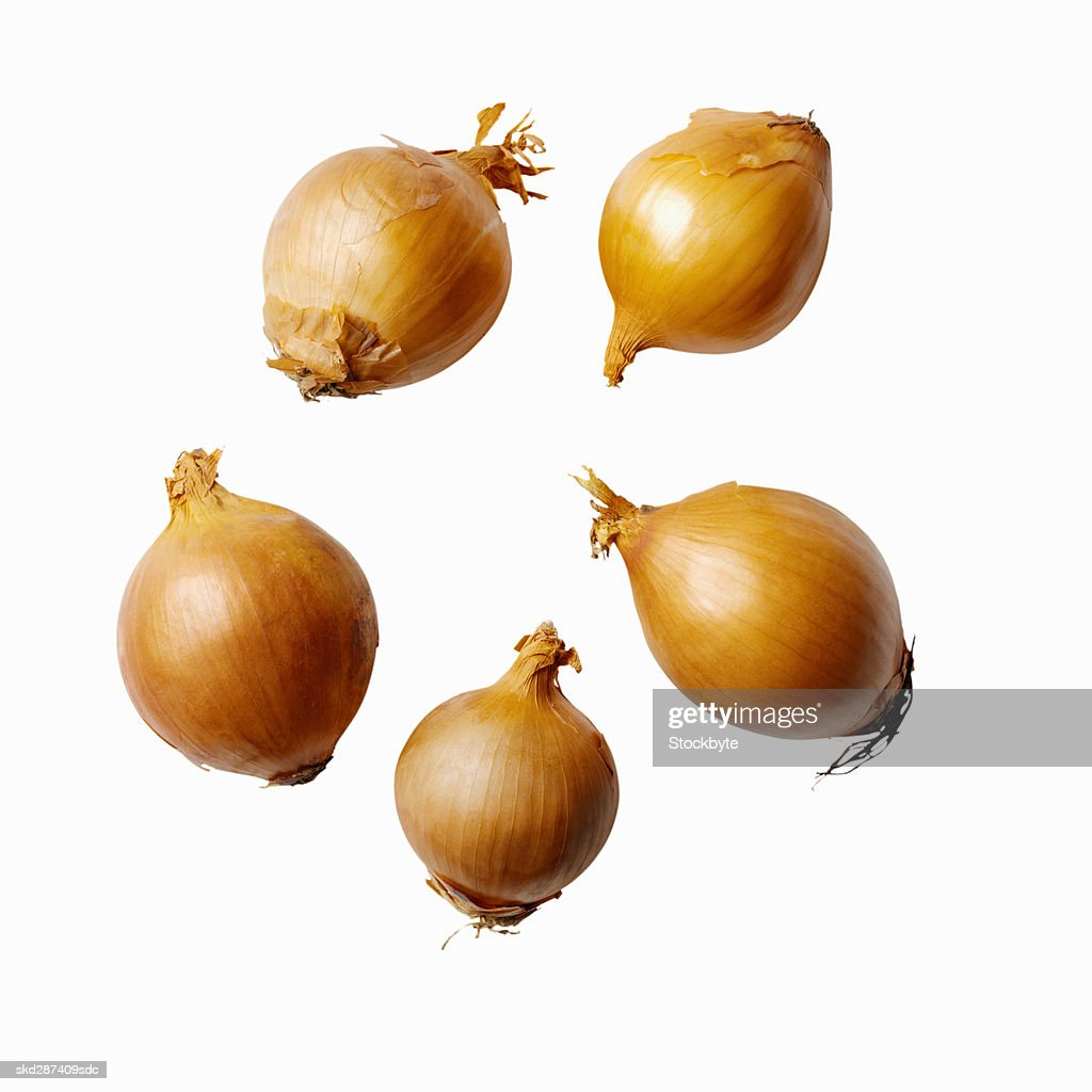 Close-up of onions : Stock Photo