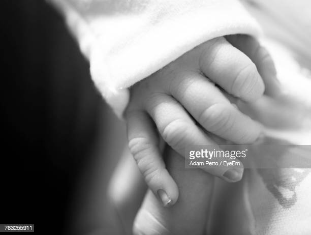 Close-Up Of Parent Holding Baby Hand
