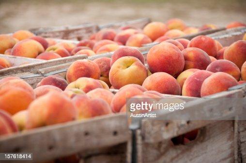 Close-Up of Peach Crates