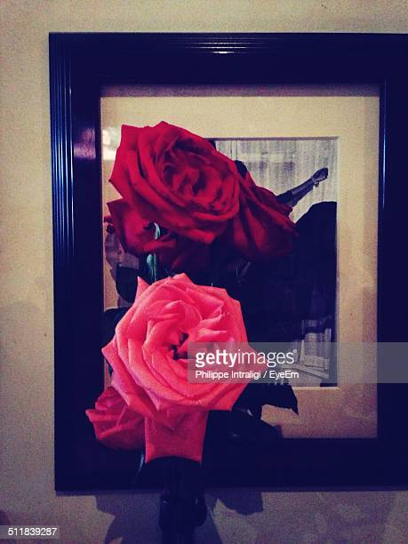 Close-up of picture frame attached rose flowers