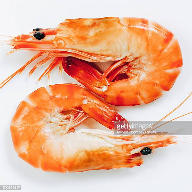 Close-Up Of Prawns Against White Background