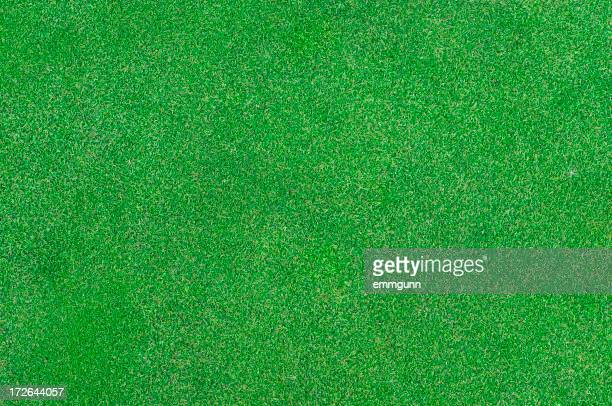 Close-up of Putting green background