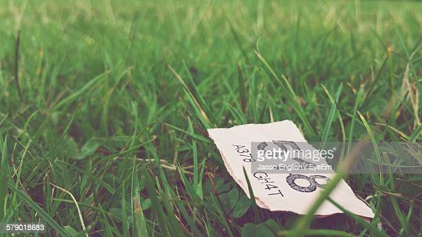 Close-Up Of Raffle Ticket On Grassy Field
