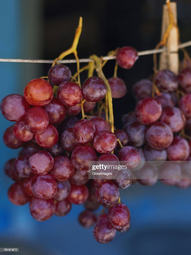 Close-up of red grapes hanging at a market stall, Providencia, Providencia y Santa Catalina, San Andres y Providencia Department, Colombia : Foto de stock
