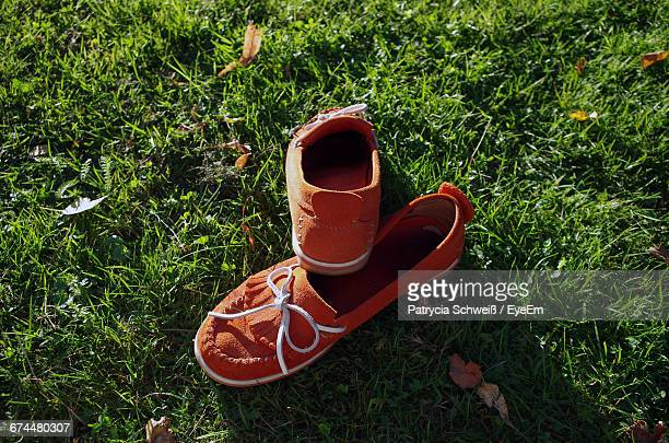 Close-Up Of Red Moccasins On Grass