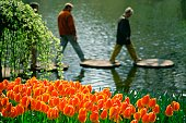 Close-up of red tulips in a garden, Keukenhof Gardens, Lisse, Netherlands
