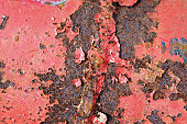 Close-up of rusted sheet metal