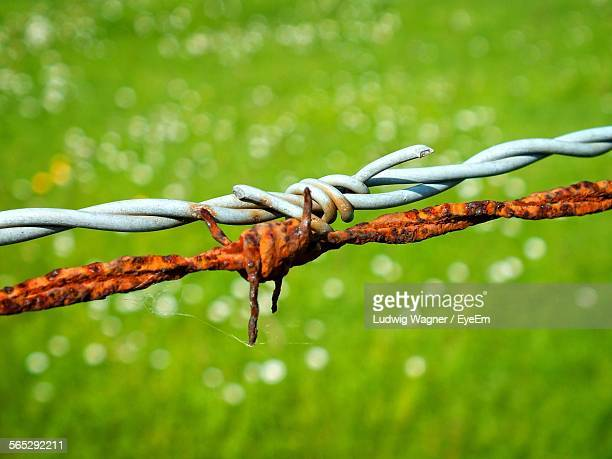 Close-Up Of Rusty Barbed Wire With New Against Field