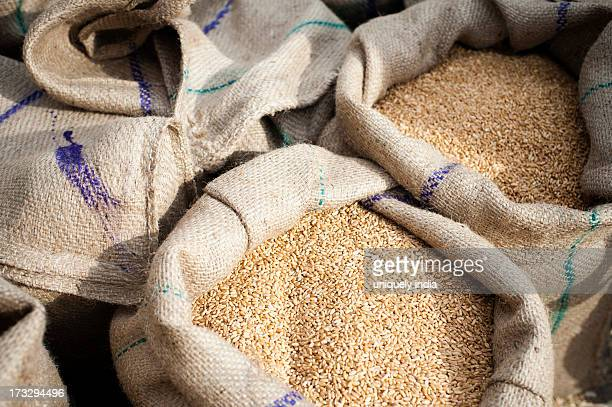 Close-up of sacks of wheat, Anaj Mandi, Sohna, Gurgaon, Haryana, India
