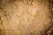 closeup of sand pattern of a beach in the summer.sand texture from sand pile.