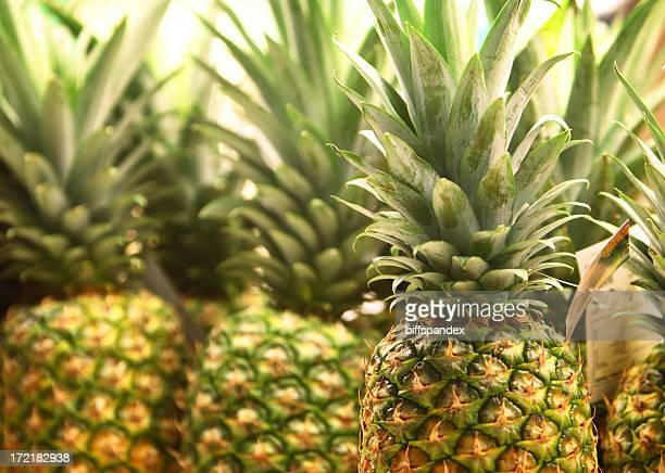 Close-up of several fresh pineapples