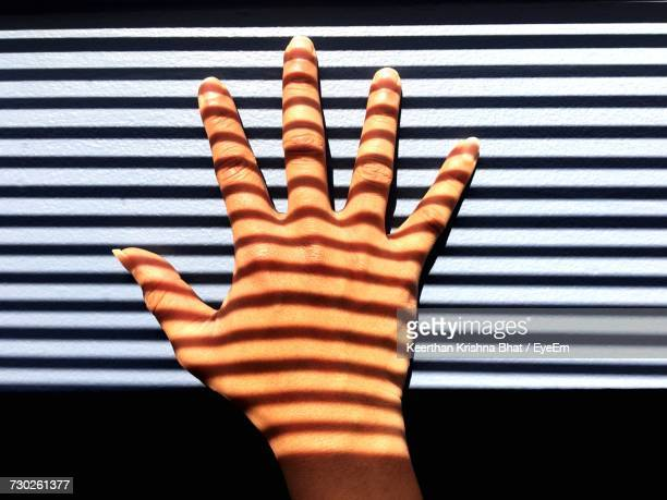 Close-Up Of Shadows Across Hand