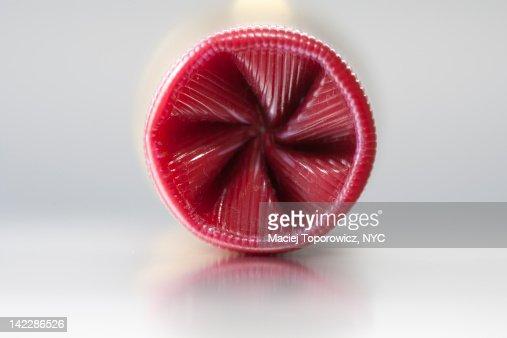 Close-up of shotgun shell : Stock Photo