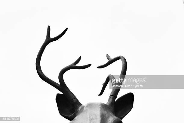 Close-up of statue of antler