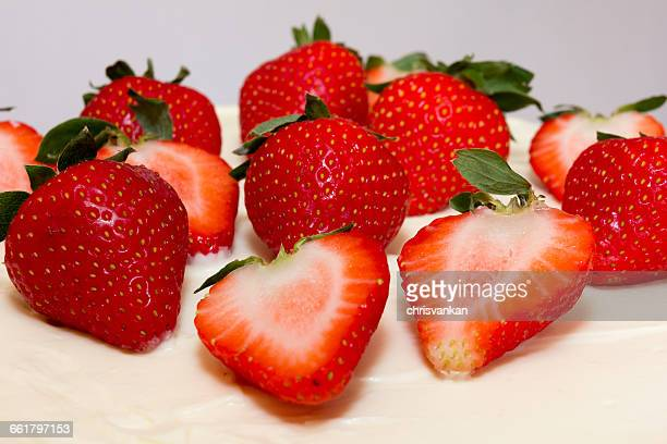 Close-up of strawberries on sponge cake icing