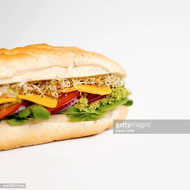 Close-up of submarine sandwich