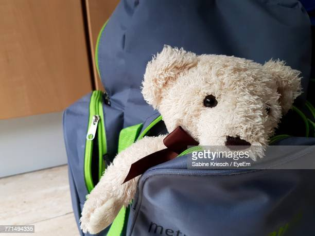 Close-Up Of Teddy Bear In Bag
