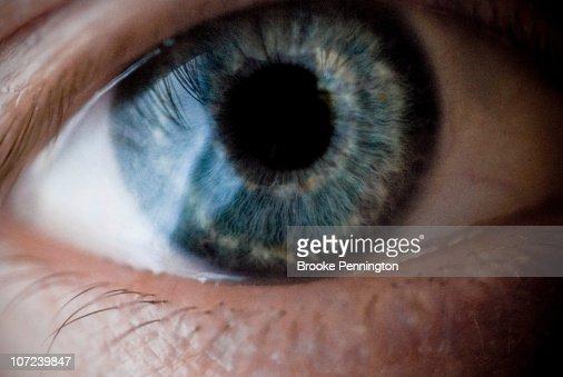 Closeup of the human eye