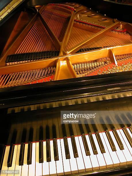 ピアノの視点
