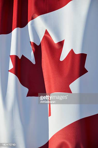 Close-up of the maple leaf on the Canadian flag