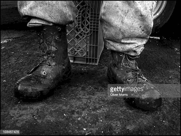Closeup of the muddy work boots of an employee at the Fulton Fish Market during the morning hours New York New York April 28 2005 In November 2005...