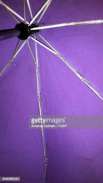 Close-up of umbrella