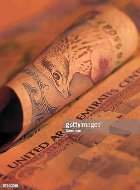 close-up of united Arab emirates bank notes (toned)