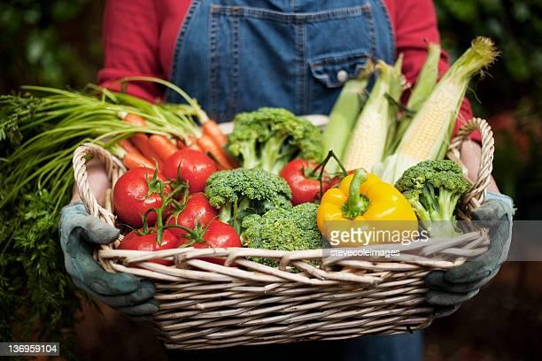 Closeup of Vegetables in Basket