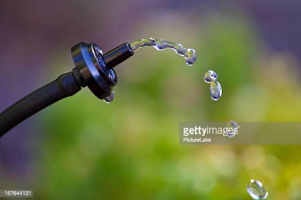 Acqua gocciolamento dripper sistema primo piano
