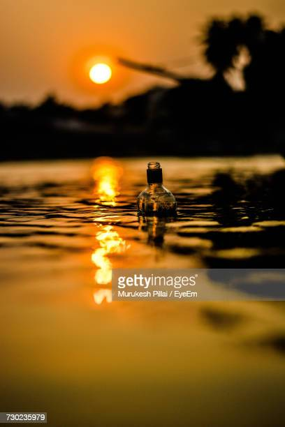 Close-Up Of Water Floating On Lake Against Sky During Sunset