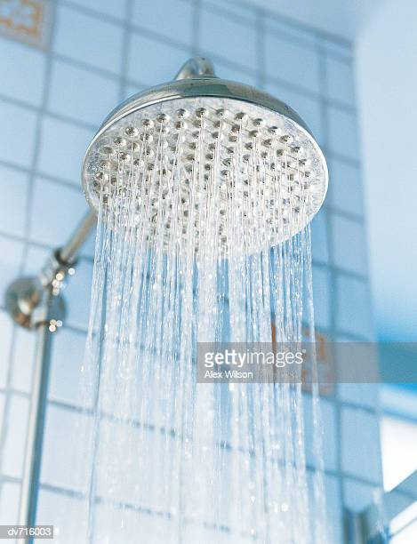 Close-Up of Water Running from a Showerhead