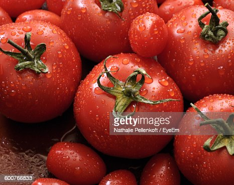 Close-Up Of Wet Ripe Tomatoes : Stock Photo