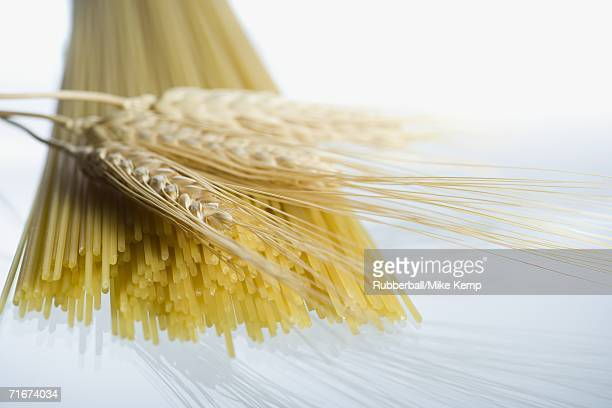 Close-up of wheat stalks and uncooked spaghetti