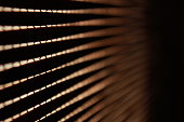 Close-up of wood curtains