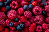 Closeup photo of freshly picked berries. On the photo there are a mix of berries: blueberry, wild strawberry and raspberry. Red, blue and purple colors. Sweden.