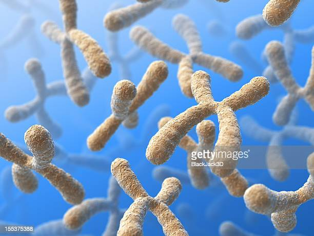 A close-up shot of chromosomes in a blue background