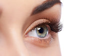 Closeup shot of female eye with day makeup on white