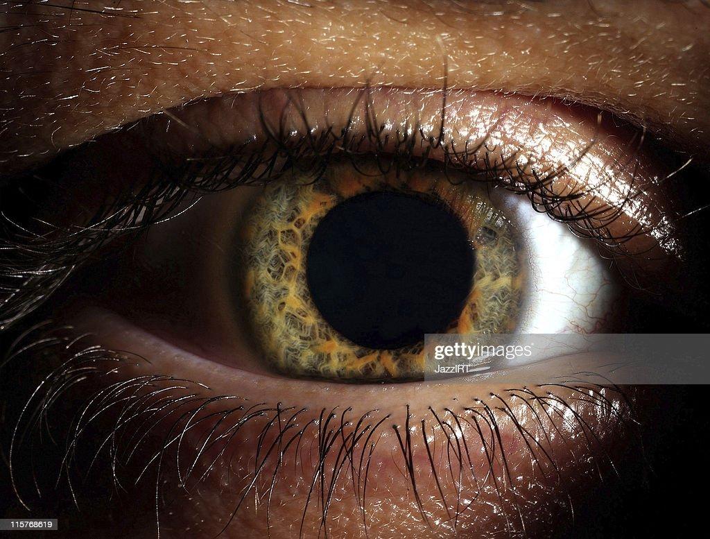 Closeup shot of the man eye